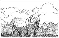 Adult - Bear Colorable Placemat
