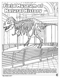 Chicago Coloring Book - Field Museum