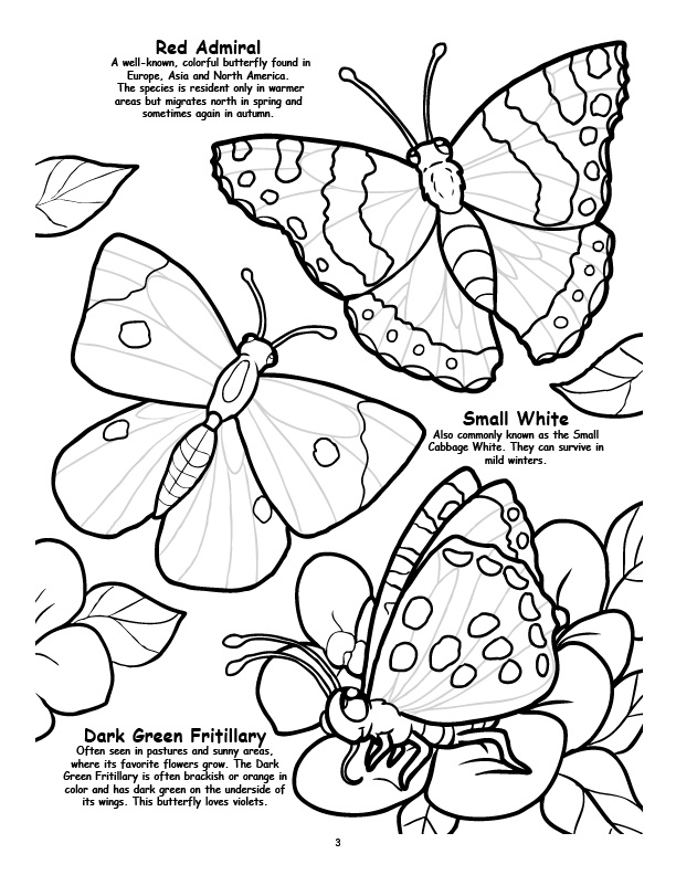 Coloring Books | Butterfly\'s, Birds, Bugs coloring books