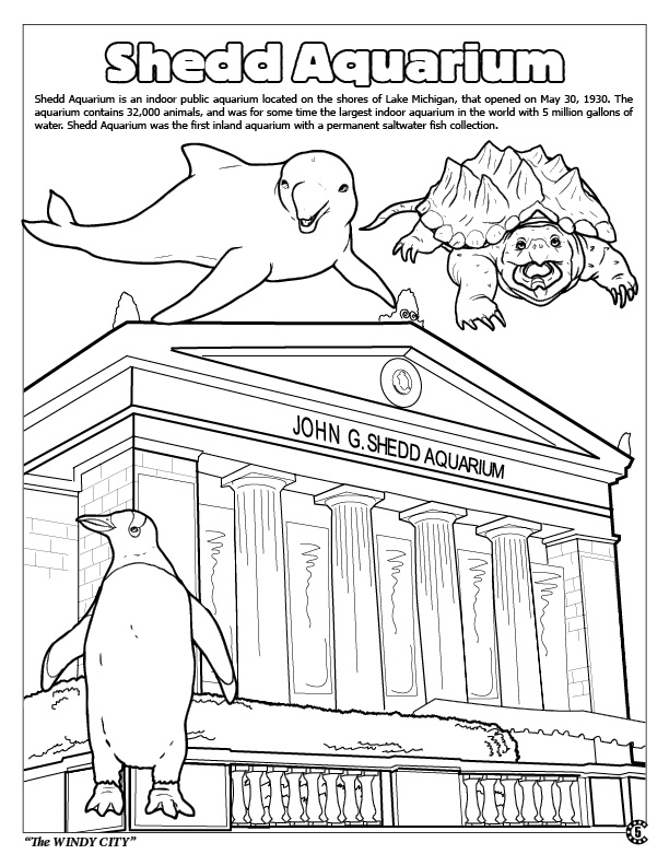 shedd aquarium coloring pages
