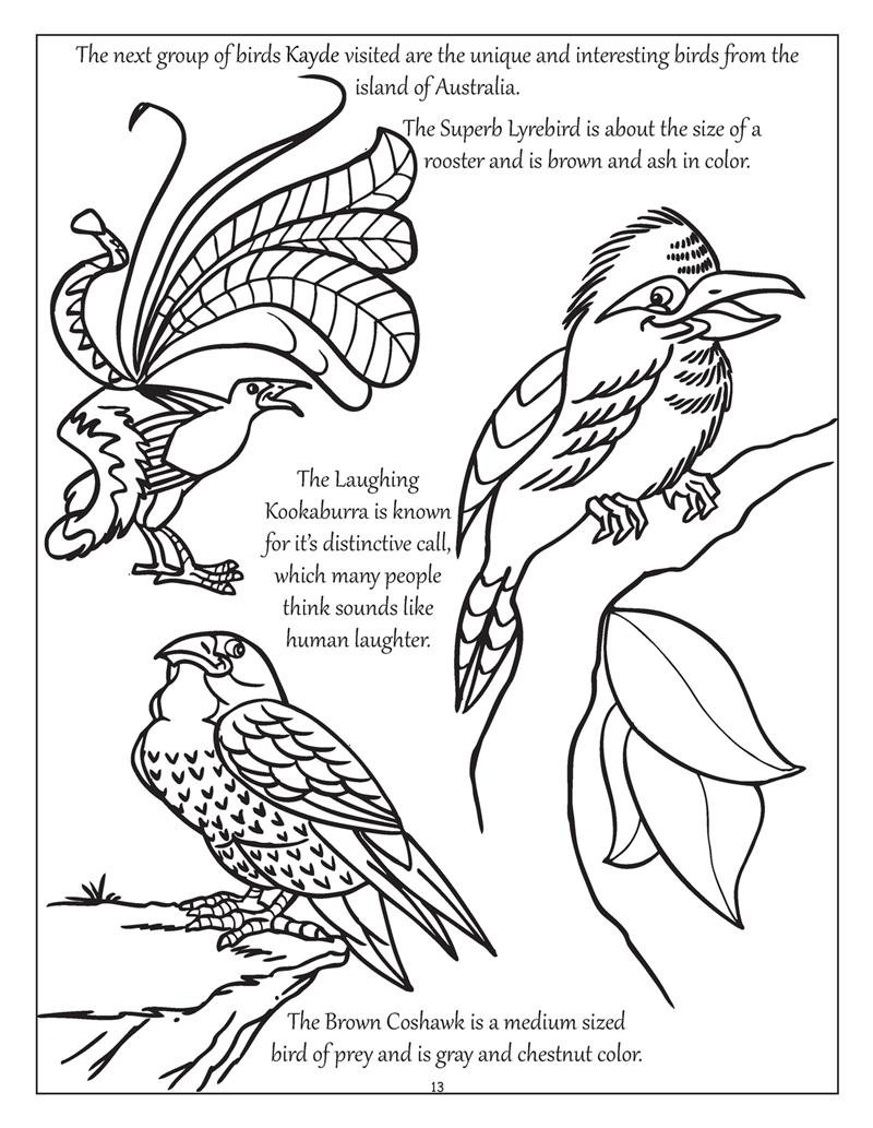 Coloring Books Personalized Big Bright Erflies And Birds