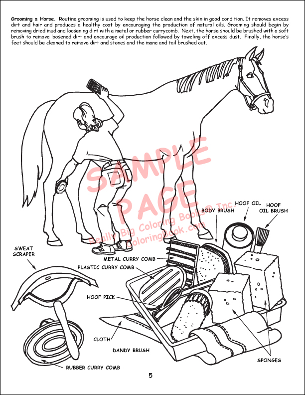 Coloring Books | Horses Coloring Books