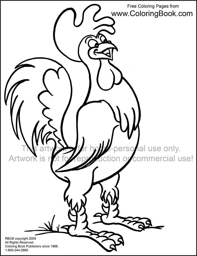 realistic rooster portrait layout. rooster coloring page. rooster ...