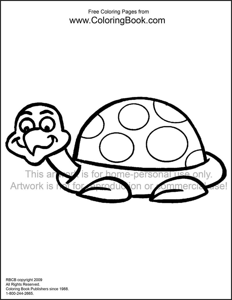 Coloring Pages | Free Online Coloring Pages-Turtle