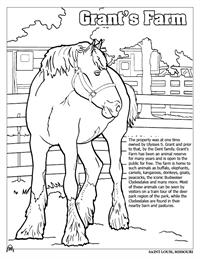 St. Louis Coloring Book - Grants Farm
