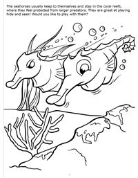 Underwater Adventure Really Big Coloring Book - Seahorse