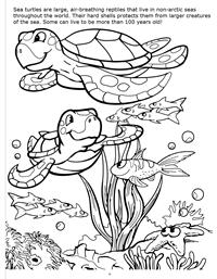 Underwater Adventure Really Big Coloring Book - Sea Turtle