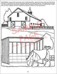 Horse Care Coloring Books